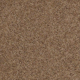 Cardinal - Antique From Shaw Carpet