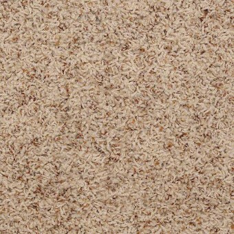 Pleasant Hill - Adobe From Shaw Carpet