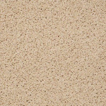 Tradewinds - Cream Shake From Showcase Collection