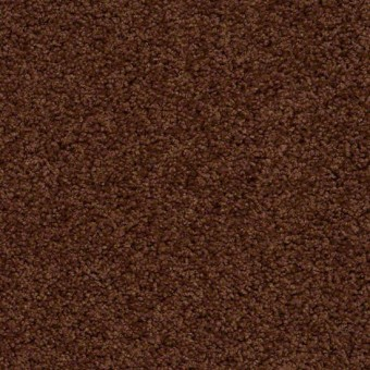 Tradewinds - Nutmeg From Showcase Collection