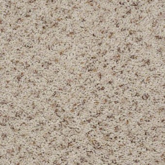 Tradewinds Fleck Shaw Carpet Save 30 50
