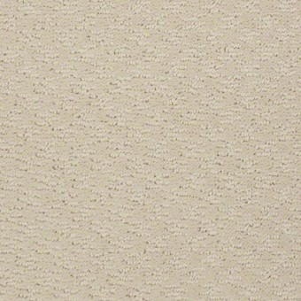 More is More - Winter White From Shaw Carpet