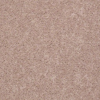 Full Court - Flax Seed From Shaw Carpet