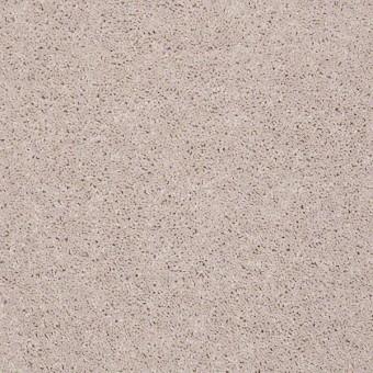 Full Court - Moon Beam From Shaw Carpet