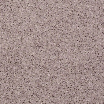 Full Court - Bare Mineral From Shaw Carpet