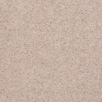 Full Court - Butter Cream From Shaw Carpet