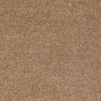 Full Court - Golden Echoes From Shaw Carpet