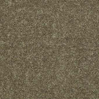 Full Court - Aloe From Shaw Carpet