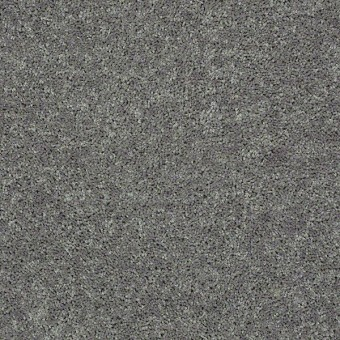 Full Court - Ink Spot From Shaw Carpet