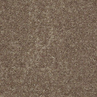 Full Court - Hearth Stone From Shaw Carpet