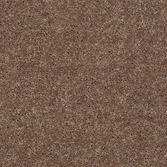 Full Court - Granola From Shaw Carpet