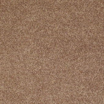 Full Court - Taffy From Shaw Carpet