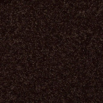 Full Court - Coffee Bean From Shaw Carpet