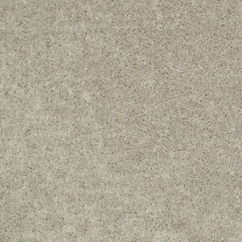 Fielder's Choice 12 - Misty Taupe From Shaw Carpet