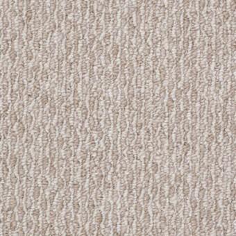 Simpatico - Beige Whisper From Shaw Carpet