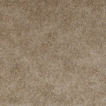 Chromatic - Antique Wood From Shaw Carpet