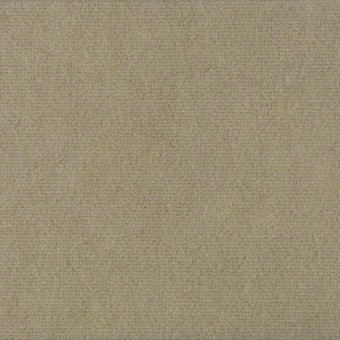 Alfresco Unitary - Blondwood From Shaw Carpet