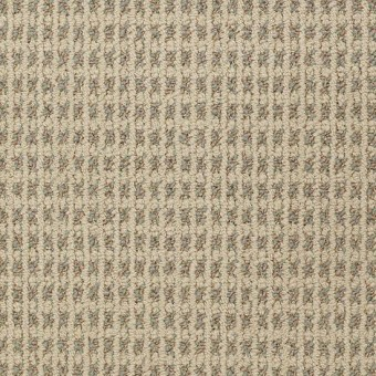Modern Traditions - Curry From Shaw Carpet
