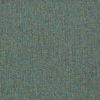 Vocation III 26 - Alternative From Shaw Carpet