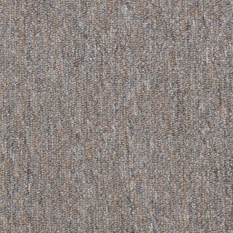 Vocation III 26 Unitary - Accredited From Shaw Carpet