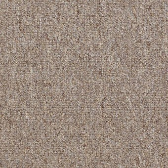 Vocation III 26 Unitary - Alternative From Shaw Carpet