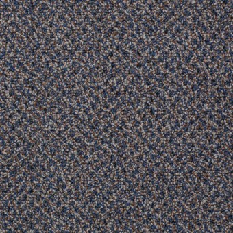 Speak Easy - Serenity From Shaw Carpet