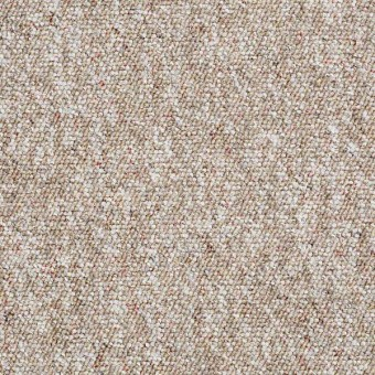 Parade of Champions II - Acorn From Shaw Carpet