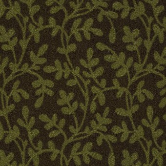 Lowland - Cascadilla From Shaw Carpet
