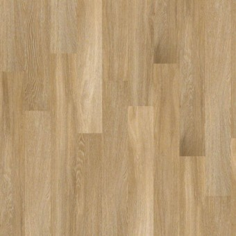 Beyond Wood - Cacao From Shaw Tile