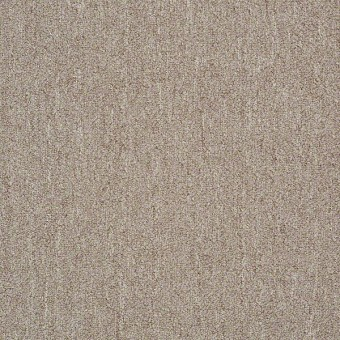 Neyland 26 Unitary - Bisque From Shaw Carpet