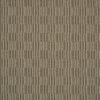 Unison - Melodious From Shaw Carpet