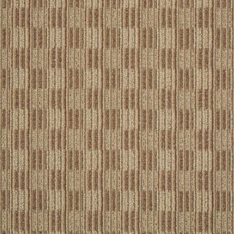 Unison - Two By Two From Shaw Carpet