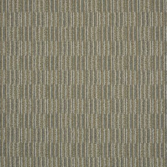 Unison - Well Tuned From Shaw Carpet