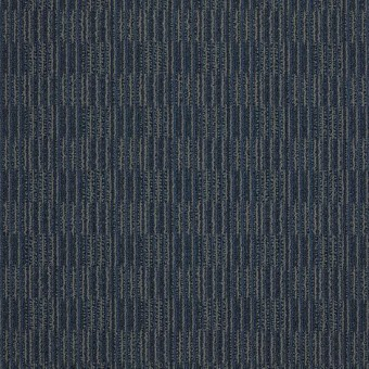Unison - Of One Mind From Shaw Carpet