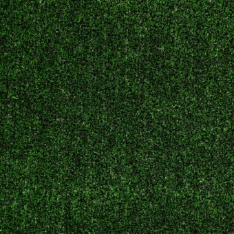 Tactic I - Holly Leaf From Shaw Carpet