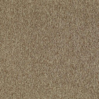 Multiplicity - Plethora From Shaw Carpet