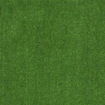 Arbor View (s) - Grass Clippings From Shaw Carpet