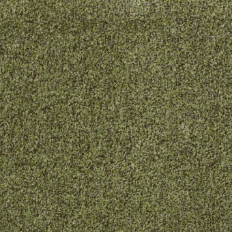 Arbor View (t) - Mossy Bark From Shaw Carpet