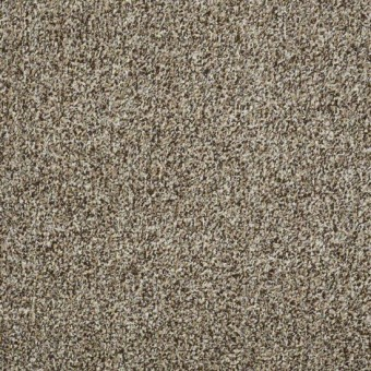 Arbor View (t) - Brown Sugar From Shaw Carpet
