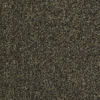 Arbor View (t) - Walnut Shell From Shaw Carpet