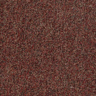 Arbor View (t) - China Berry From Shaw Carpet