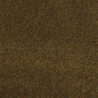 Cabana Tweed - Copper Glaze From Shaw Carpet