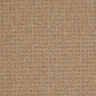 Casual Boucle - Clay Pot From Shaw Carpet