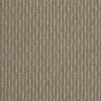 Pattern Play - Bayou Beige From Shaw Carpet