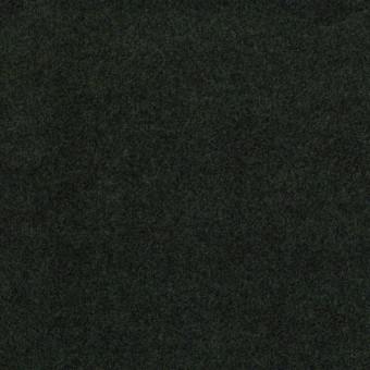 Softscape I 12 - Forest Night From Shaw Carpet