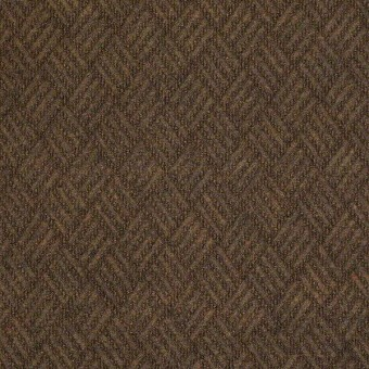 Dreamweaver - Boardwalk From Shaw Carpet