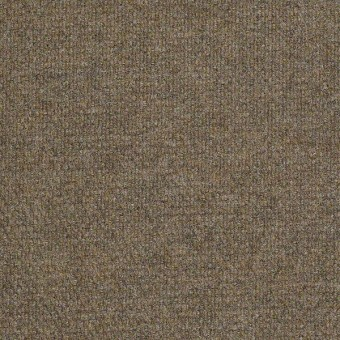 Succession II - Sierra Sand From Shaw Carpet