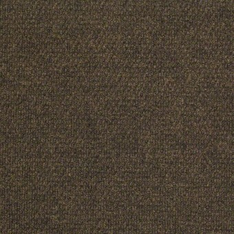 Succession II - French Toast From Shaw Carpet