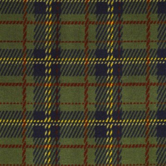 Scottish Plaid Philadelphia Carpet Shaw