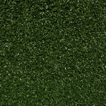 Intensify - Pine Green From Shaw Carpet